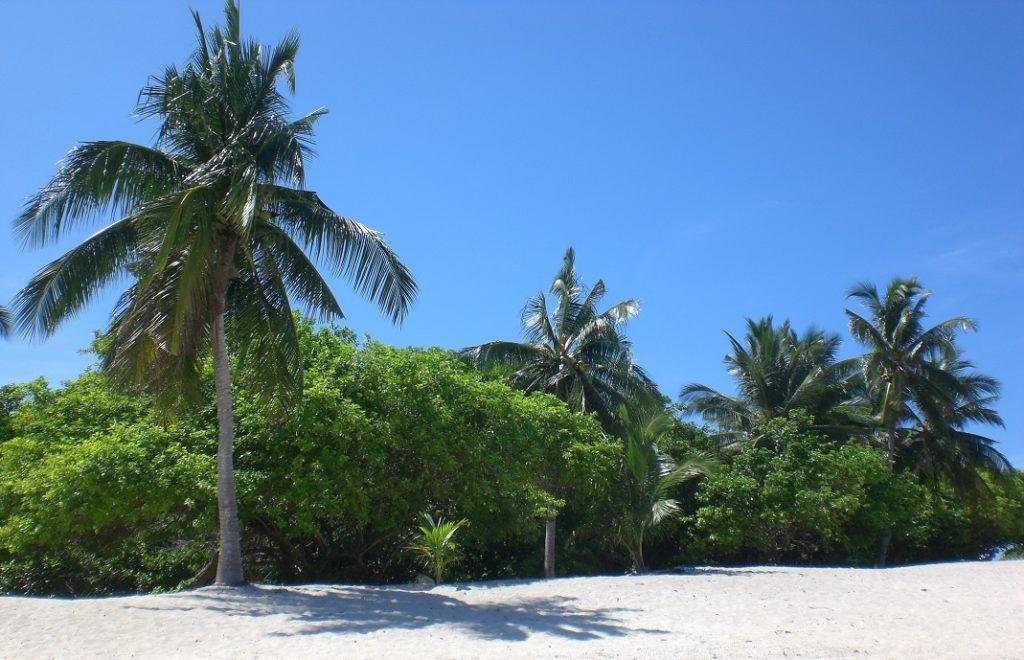 Reiseblogg, Borneo, Turtle Island
