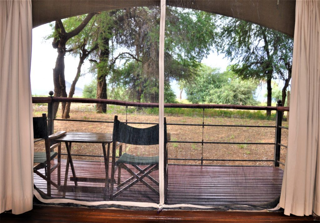 Reiseblogg, Kenya, Afrika, safari, Unike Reiser